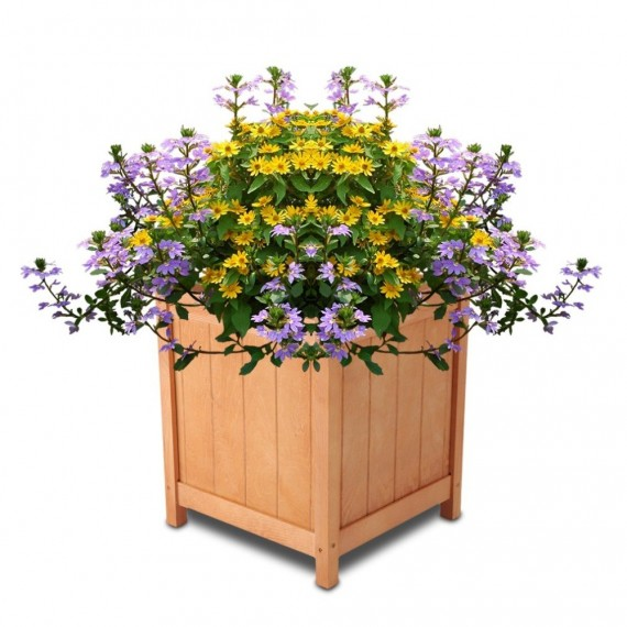 Natural wooden tray - 3