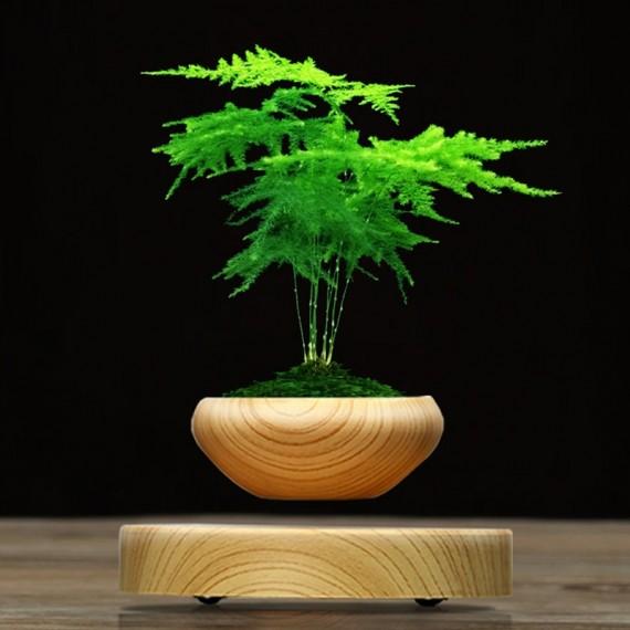 Levitating round pot - 1
