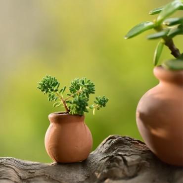 Mini pot en céramique imitation terre cuite - 3
