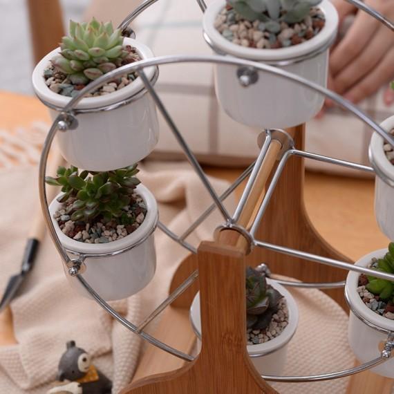 Ensemble grande roue et 6 pots en céramique - 5
