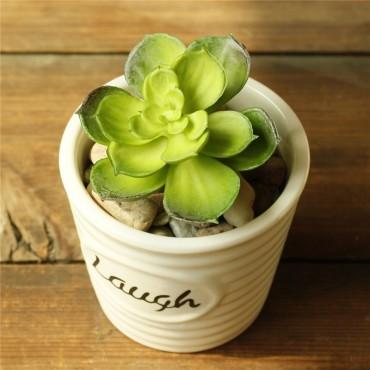 Pots Love, live, laugh - 3