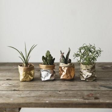 Washable paper bag plant pot - 7 colors - 4