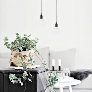 Cache-pot sac en papier lavable - 7 couleurs - 6