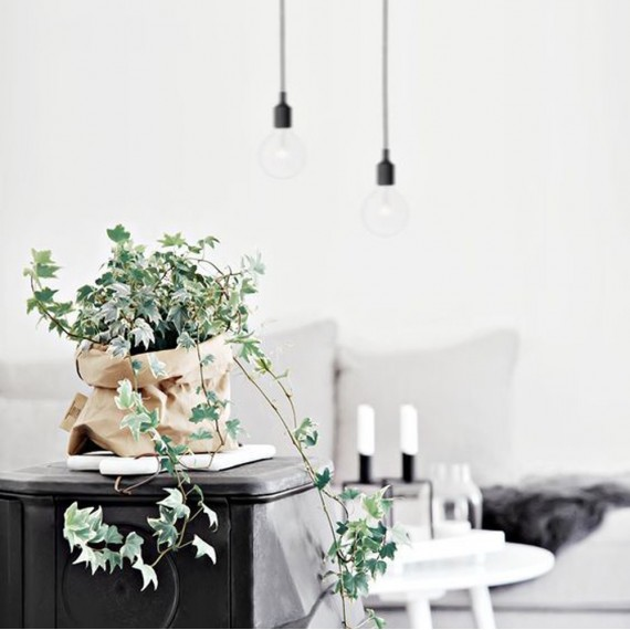 Washable paper bag plant pot - 7 colors - 6
