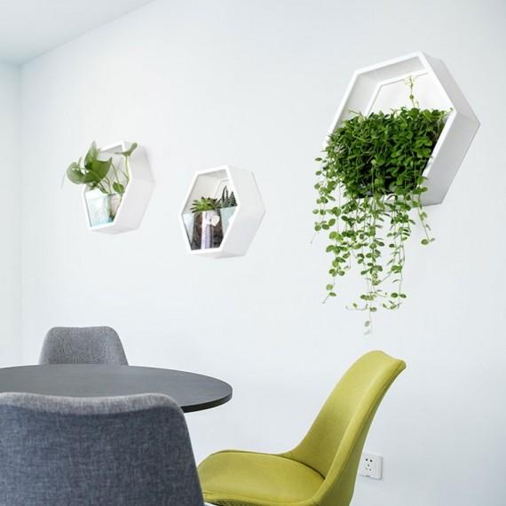 Pot mural avec vitre transparente - 4