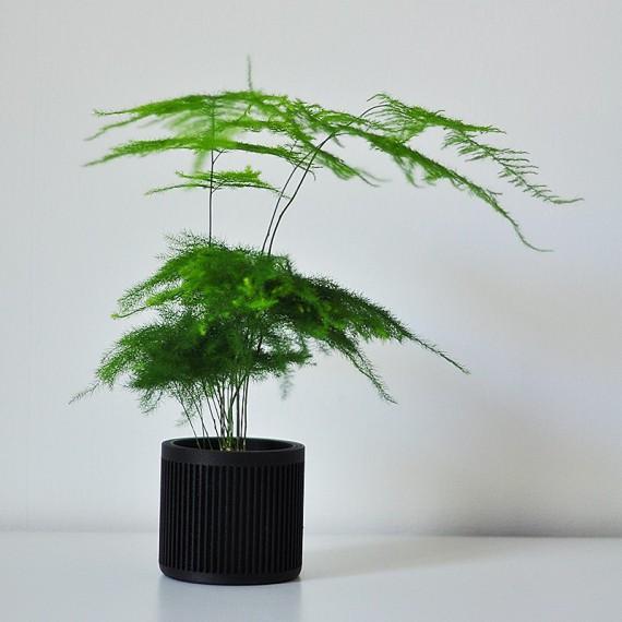 Bao - Pot en bois design - 2