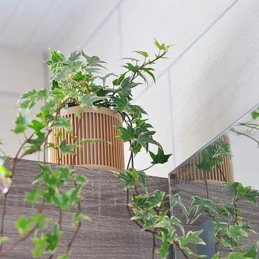Bao - Design wooden pot - 3