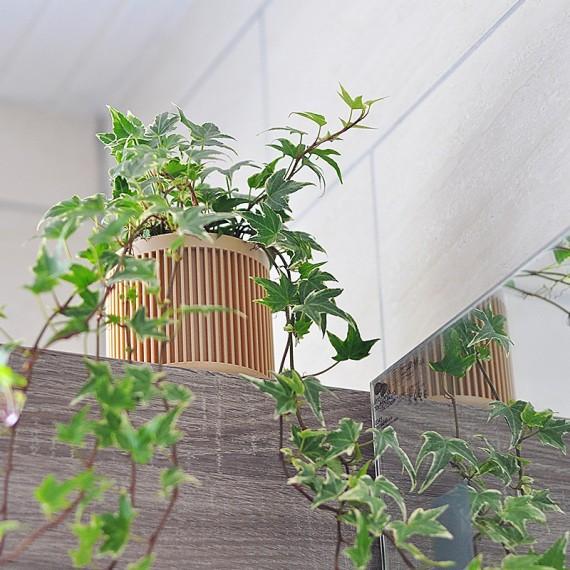 Bao - Pot en bois design - 3