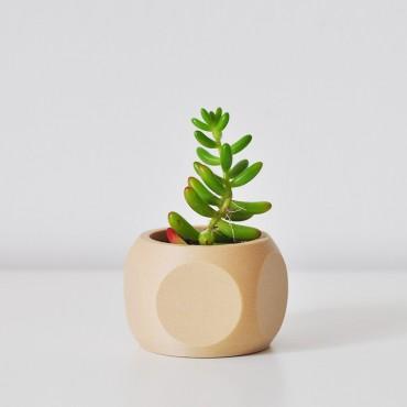 "Pot de fleurs ""Flat"" - 1"