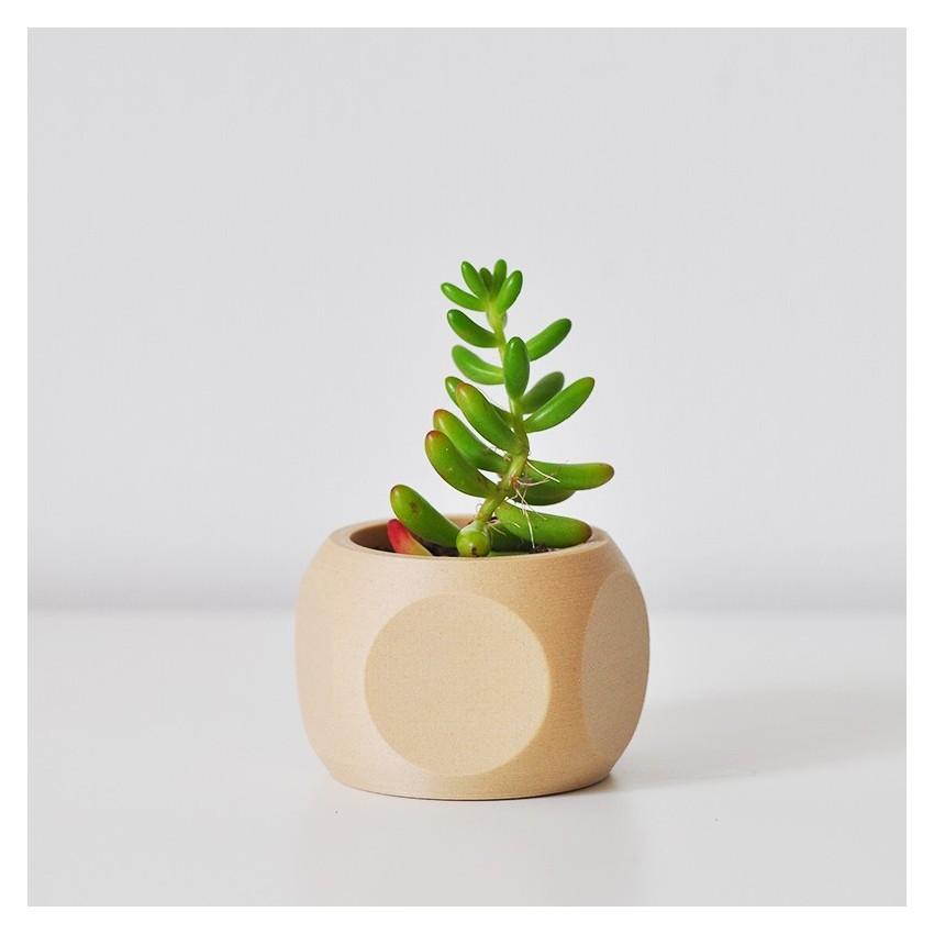 Pot de fleurs flat - 1
