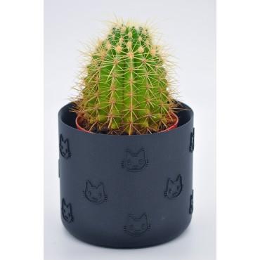 Le Pot Em'maow - 1