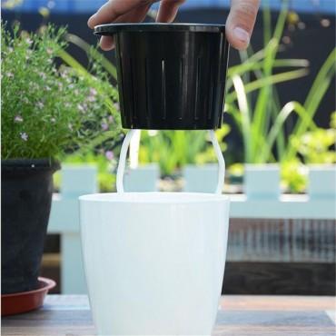 Pot absorbant et son cache-pot - 5