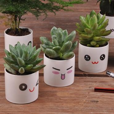 Cute ceramic pot kawaii - 3