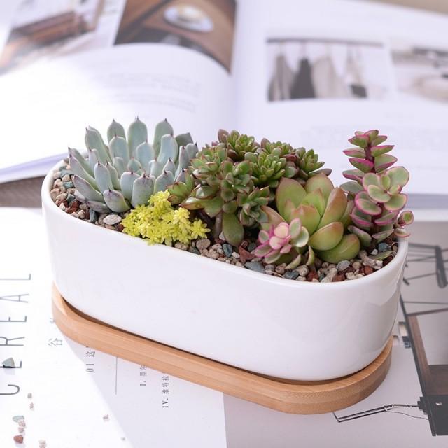 Pot en céramique allongé - 1
