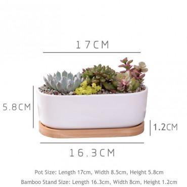 Pot en céramique allongé - 2