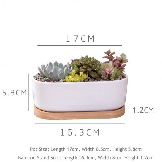 Elongated ceramic pot - 2