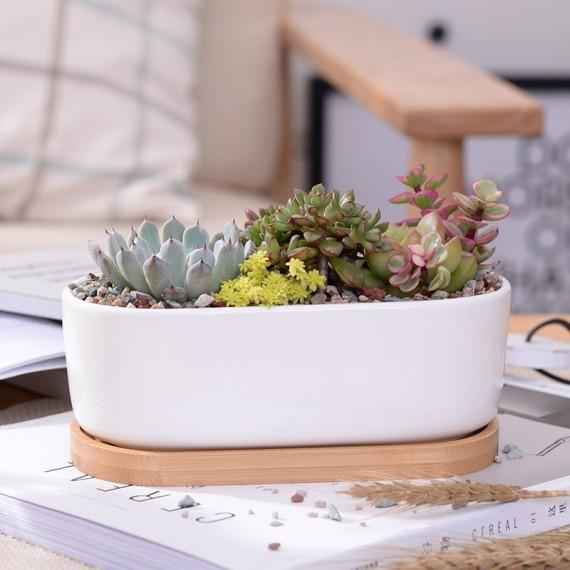 Elongated ceramic pot - 3