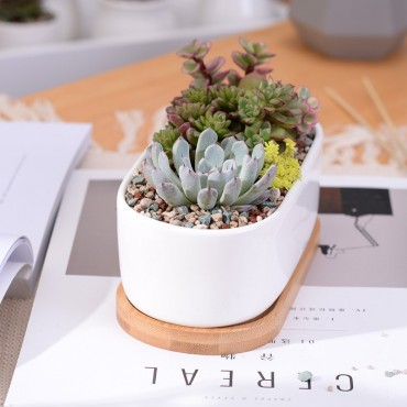 Elongated ceramic pot - 4