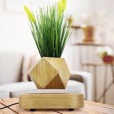 Design levitating pot - 1