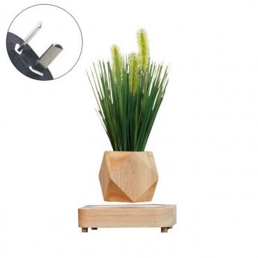 Design levitating pot - 6