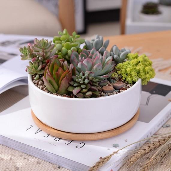 Scandinavian white ceramic pot - 1