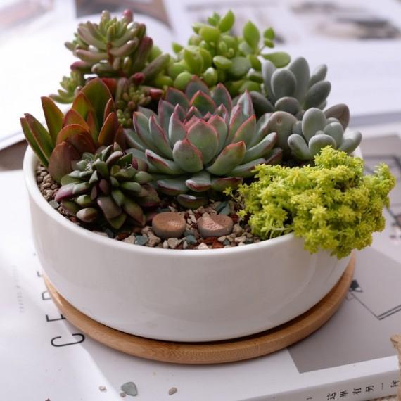 Scandinavian white ceramic pot - 4