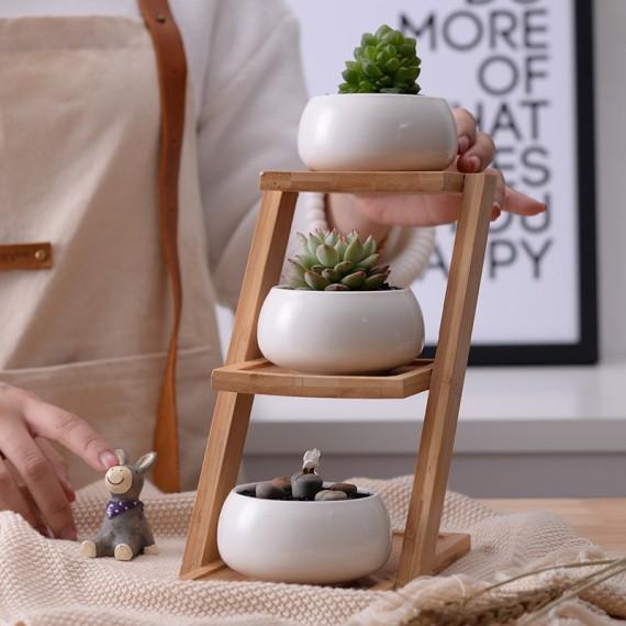 Les 3 pots en céramique et leur plateau en bois - 1