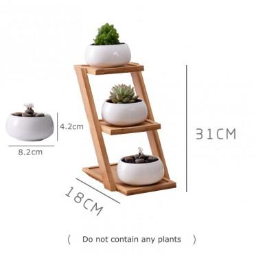Les 3 pots en céramique et leur plateau en bois - 2