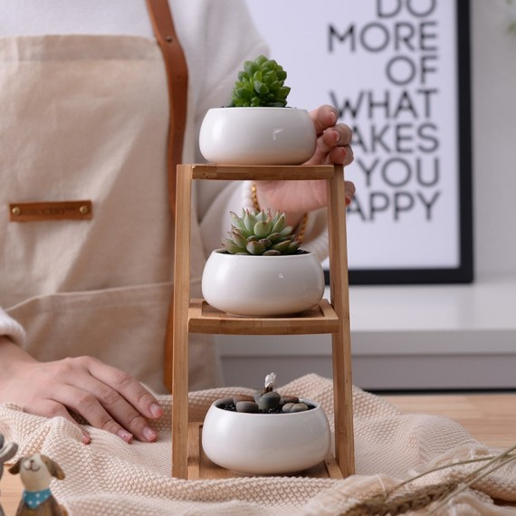 The 3 ceramic pots and their wooden tray - 3