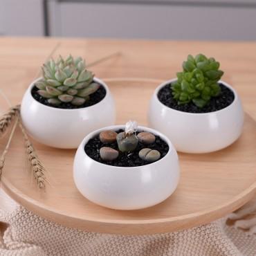 Les 3 pots en céramique et leur plateau en bois - 5