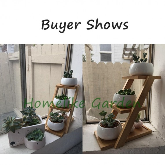 The 3 ceramic pots and their wooden tray - 6
