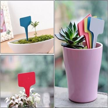 Balises pour étiquetage des plantes - 3