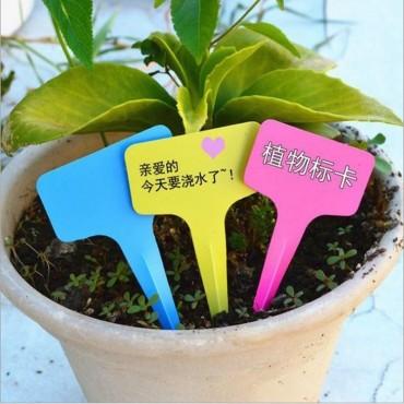 Balises pour étiquetage des plantes - 4