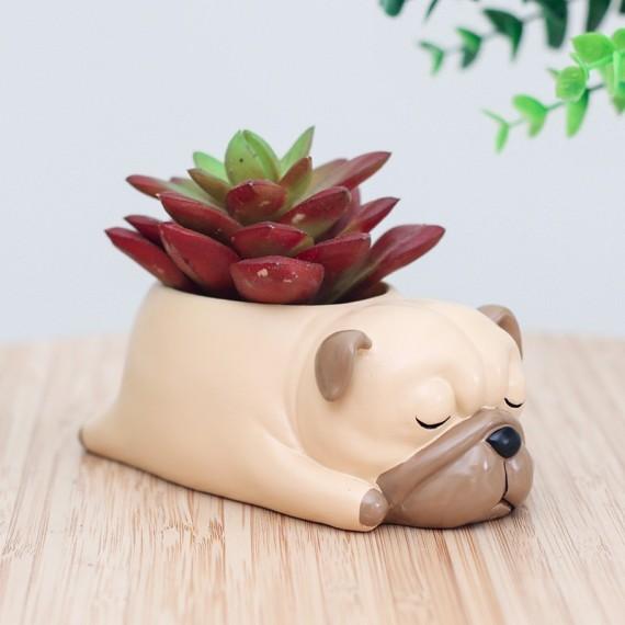 Pot de fleur chien qui dort - 2