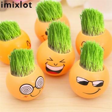Imixllot - Little guy with hair-grass - 1