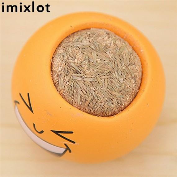 Imixllot - Little guy with hair-grass - 2
