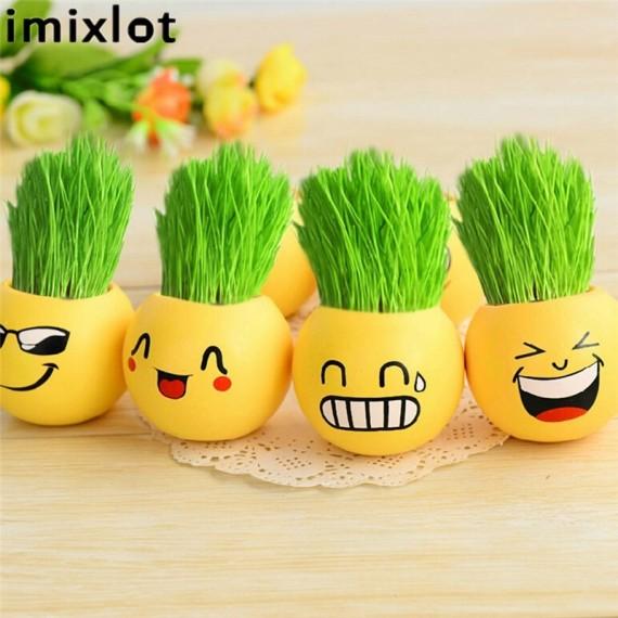 Imixllot - Little guy with hair-grass - 3
